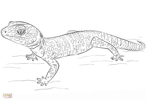 Coloring Page Gecko by Gecko Coloring Pages Crafted Here