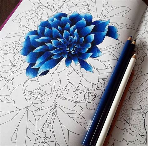 shading with colored pencils 20 best ideas about colored pencil drawings on