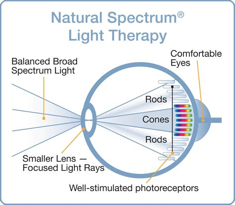natural spectrum light therapy amazon com verilux happylight liberty 10 000 lux light