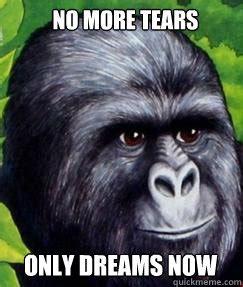 Gorilla Munch Meme - gorilla munch cereal memes