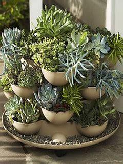 patio porch garden planter  cactus eclectic