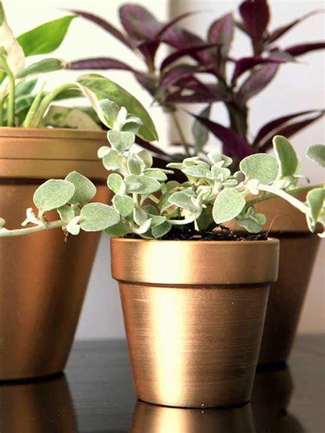 spray painting terracotta pots 17 diy ideas to dress up terra cotta flower pots the