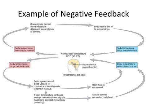 bad feedback related keywords bad feedback long tail