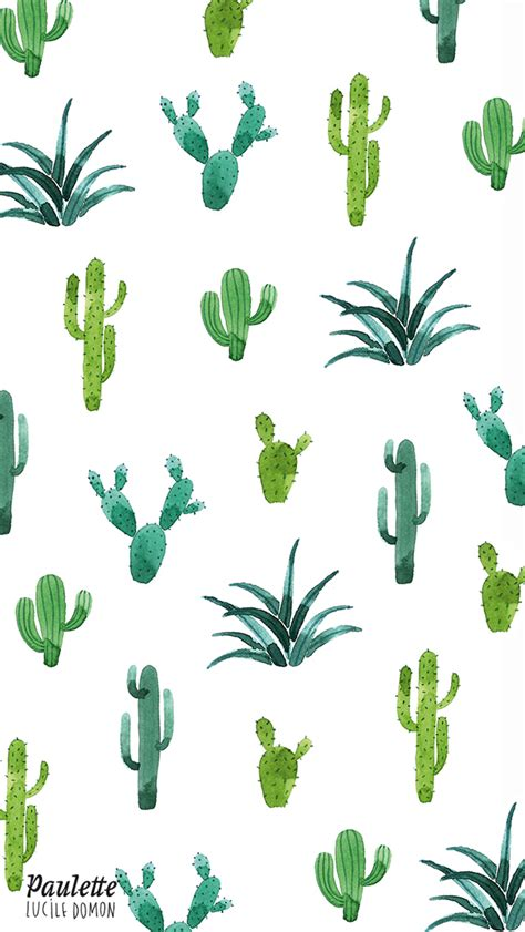 wallpaper for iphone cactus cactus iphone wallpaper iphone wallpapers pinterest