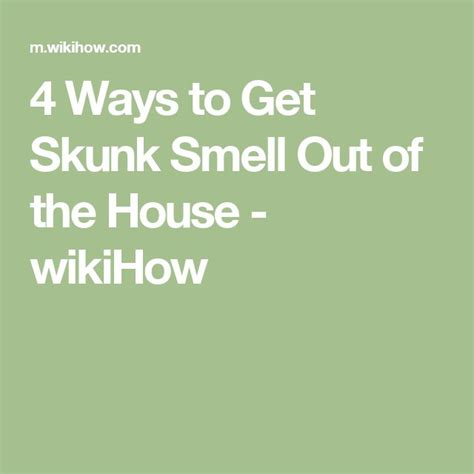How To Get Skunk Smell Out Of House 1000 ideas about skunk smell on skunk smell