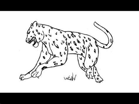 imagenes de jaguares para dibujar come disegnare un giaguaro passo dopo passo animali