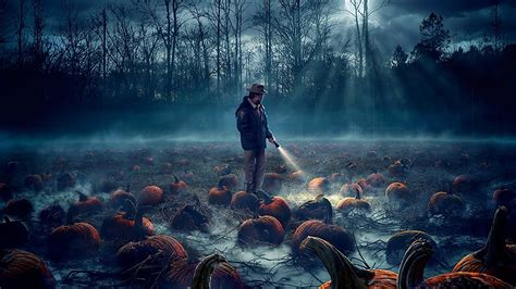 house tv show wallpapers high definition all hd wallpapers hd stranger things 2 pumpkin field 162