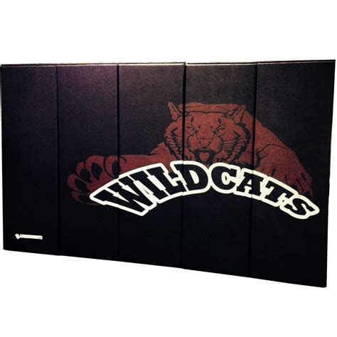 Wall Mats For Gyms by Wall Padding Wall Mats Custom Pads Ask Home Design