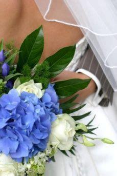 hydrangea wedding bouquets love  electric blue
