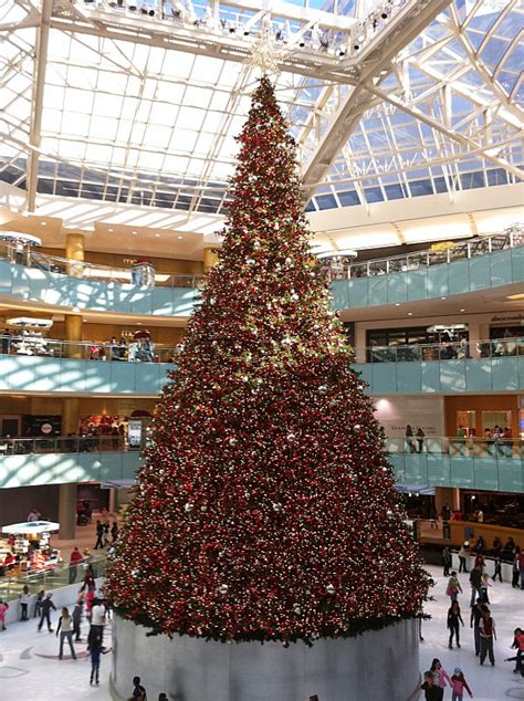 the 10 most amazing christmas trees in the u s
