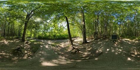 imagenes hdri para keyshot june in forest at polish coast