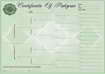 pedigree certificate template pedigree certificate forms 4 generation forms and
