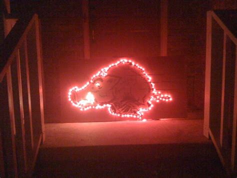 17 best images about woo pig sooie on pinterest