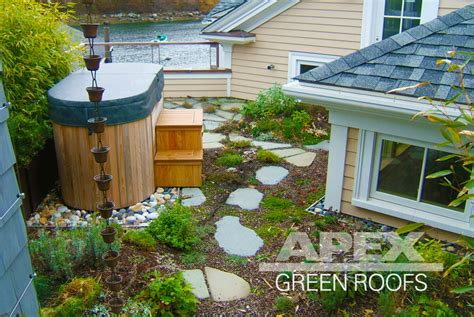 residential green roof projects apex green roofs