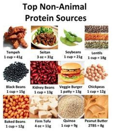 e vegetables vs 100 calories protein and united states on