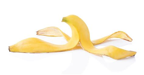 Banana Peel retreat cancelled after banana peel found in tree