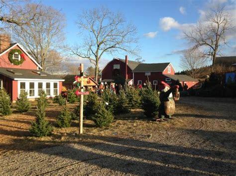 top 28 jones family farm christmas trees jones family