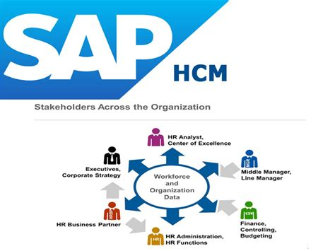 Sap Courses For Mba Hr by Sap Hcm Rgs It Solutions