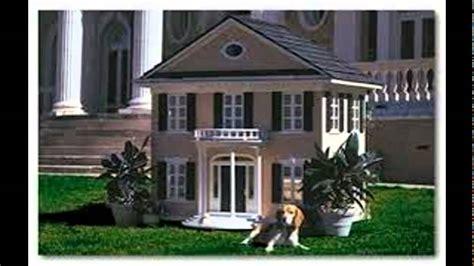 casa per cani per cani cuccie di lusso per cani guardate