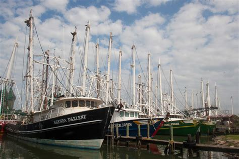 boat names louisiana better harvest is expected as shrimping season starts