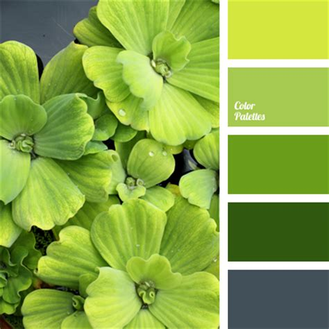 spring green color palette spring green color color palette ideas