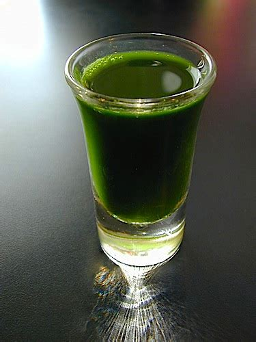 Wheatgrass Detox Liver by 3 Basic Method For Juicing The Wheatgrass Juice A