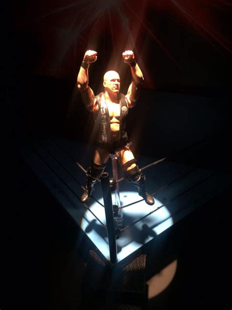 Bandai Shf Cold Steve the rock and cold steve sh figuarts the