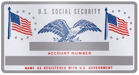 social security card template generator tags generator customized id dogtags for