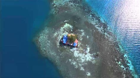 bird island belize airbnb renta una incre 237 ble isla en belice por menos de 500 d 243 lares headbang