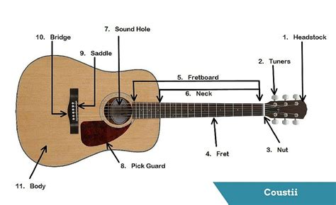 guitar diagram with parts guitar s anatomy parts of an acoustic guitar coustii