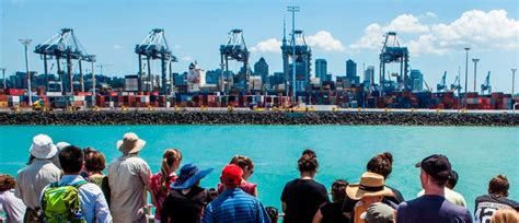 auckland boat tours ports of auckland boat tours auckland nzherald events