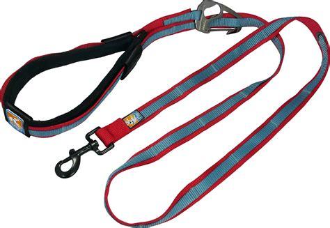 free leash kurgo quantum free leash blue chewy