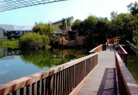 whisby garden centre lincoln 17 best images about lincolnshire on national