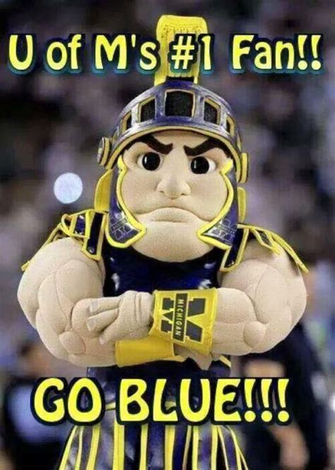 michigan football colors 421 best go blue michigan wolverines images on