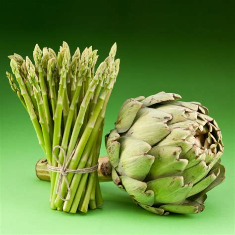 can dogs eat artichokes can cats eat artichokes or asparagus catster
