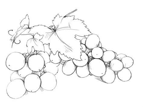 как пасынковать виноград осенью видео