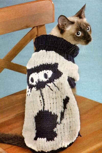 knitted hats  sweaters  cats  dogs modern pet