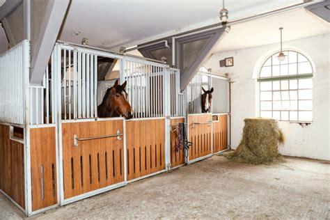 ein pferdestall zum wohlfuehlen gross hell und luftig