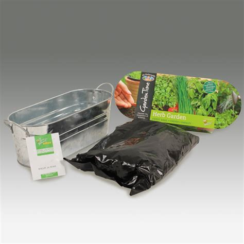 windowsill herb garden kit garden time range windowsill herb garden kit from mr