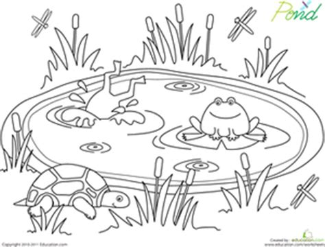 Pond Life Coloring Page Pond Life Pond And Worksheets Pond Coloring Page