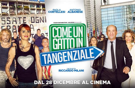 come vedere film in fullhd streaming in italiano ed come un gatto in tangenziale streaming filmsenzalimiti