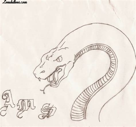 imagenes de serpientes para dibujar a lapiz dibujos de serpientes a lapiz imagui
