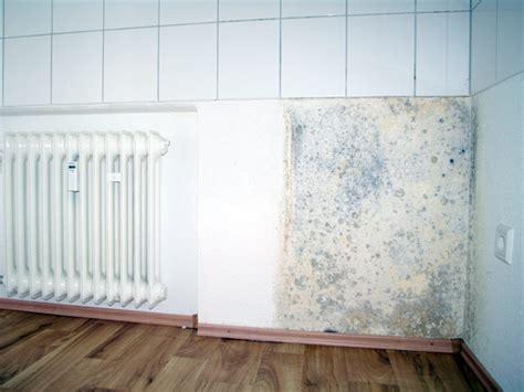 rimedi contro la muffa in casa rimedi contro la muffa prevenzione muffa umidit 224 in casa