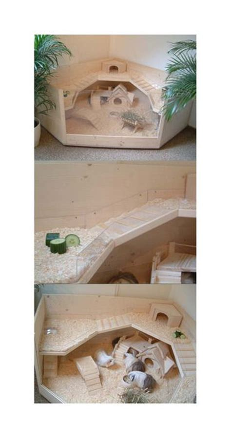 Guinea Pig House Plans Free Blueprints For Rabbit Hutches Woodworking Projects Plans
