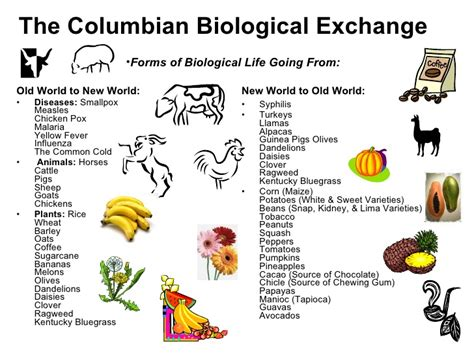 Pre Columbian Times