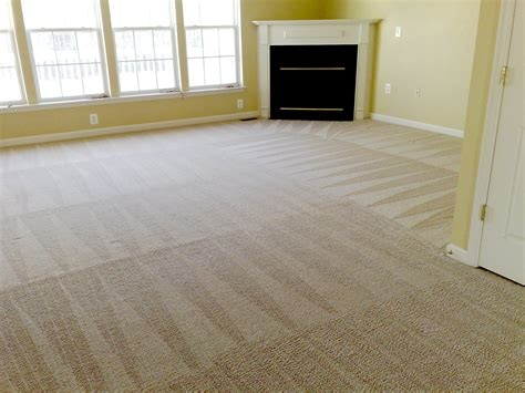 cleaning rugs at home carpet cleaning and care in alabama n