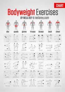 42 exercices de musculation sans mat 233 riel 224 faire chez soi