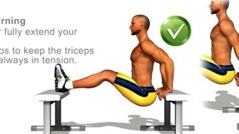 tricep workouts 187 health and fitness