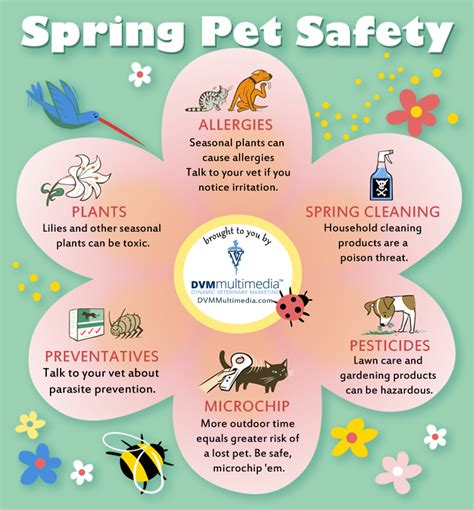 spring tips news spring pet safety tips