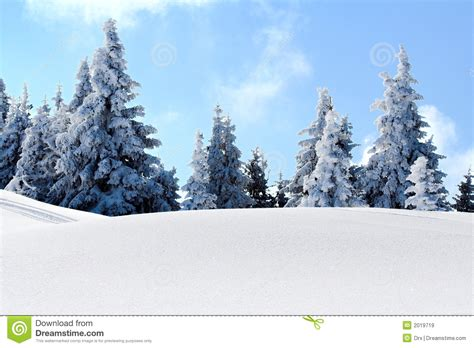 school in snow royalty free stock image image snow mountain trees royalty free stock images image 2019719